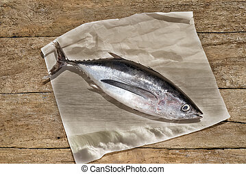 Albacore still life on rustic wooden background