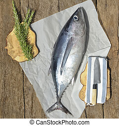 albacore, tuna ryba