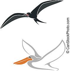 Albatross and pelican birds symbols