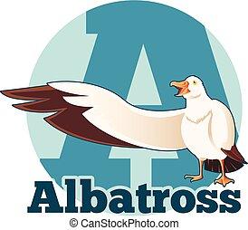 albatroz, abc, caricatura