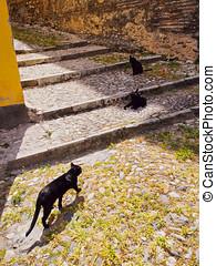 Albayzin in Granada, Spain - Albayzin District in Granada -...
