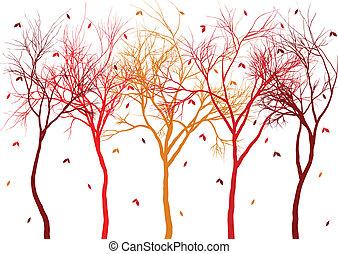 alberi autunno, con, congedi cadenti