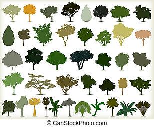 alberi., silhouette, vettore, set