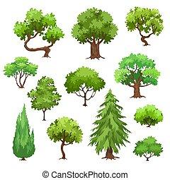 alberi verdi, collezione