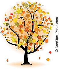albero acero, foglia autunno, fall.