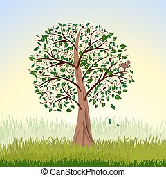 albero, alba