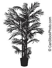 albero, bambù