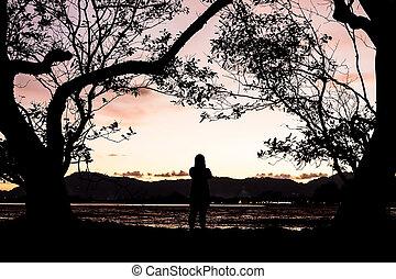 albero, boder, silhouette, donne