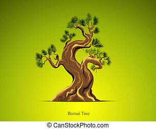 albero bonsai, fondo