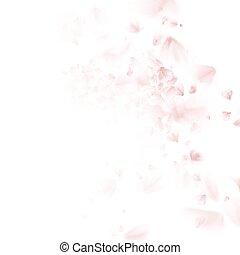 albero ciliegia, cadere, petal., eps, 10