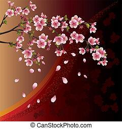 albero ciliegia, fondo