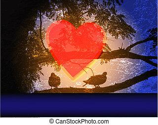 albero, colombe