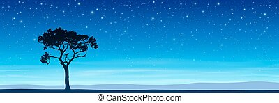 albero, con, cielo notte