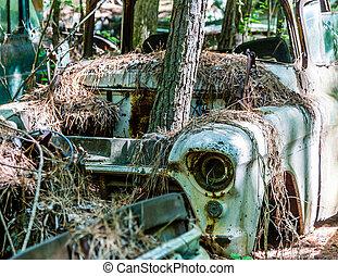 albero, crescente, attraverso, motore, scompartimento