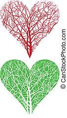 albero, cuore
