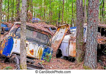 albero, distrutto, automobili