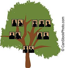 albero, famiglia
