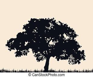 albero, grass., vettore, silhouette