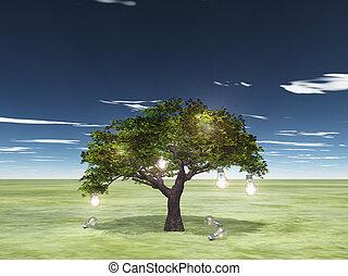 albero, idee