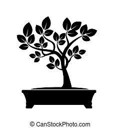 albero., illustrazione, vettore, oliva verde, bonsai.