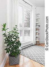 albero limone, stanza, con, pacifico, vista