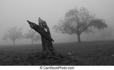 albero, mela, morto