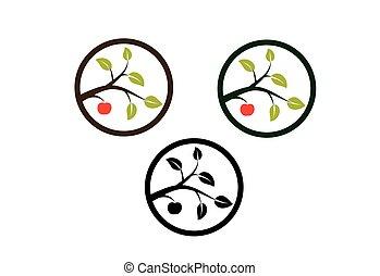 albero, mela, ramo