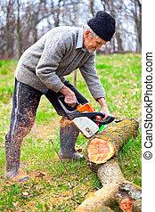 albero, motosega, taglio, vecchio, contadino