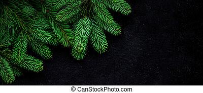 albero natale, pino, rami, su, nero, fondo., vista, da,...