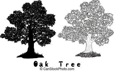 albero quercia, silhouette, contorni, e, iscrizioni