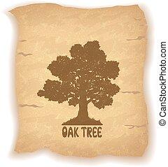 albero quercia, su, vecchio, carta