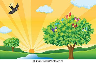 albero, raggi, uccelli, sole