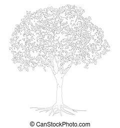 albero, schizzo, vettore, silhouette
