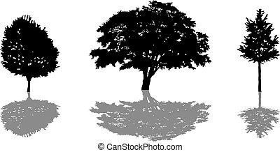 albero, set, silhouette, shadow., icona