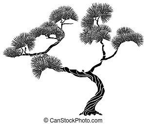 albero, silhouette, pino
