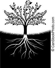 albero, silhouette, radici
