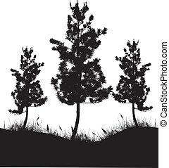 albero, silhouette
