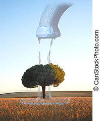 albero, sogno, assetato