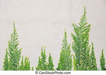 Parete mattone verde muschio pietre forme pietra - Albero su parete ...