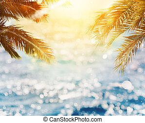 albero tropicale, noce di cocco, spiaggia, tramonto