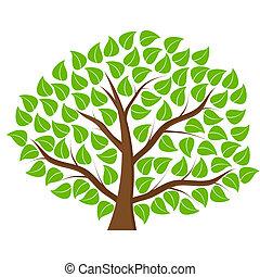 albero verde, bianco, fondo