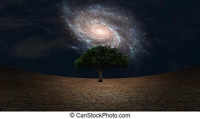 albero verde, land., arido, surrealism.