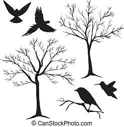 albero, vettore, 2, silhouette, uccelli