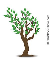 albero., vettore, disegno