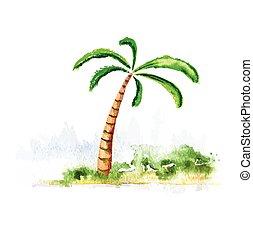 albero, vettore, palma, watercolour, illustrazione