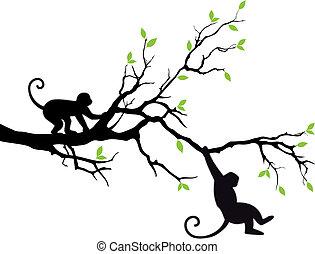 albero, vettore, scimmie