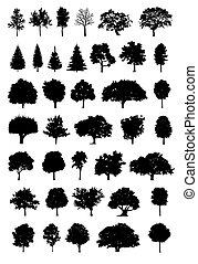 albero, vettore, silhouette