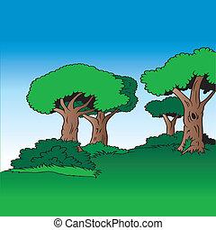 albero, vicolo