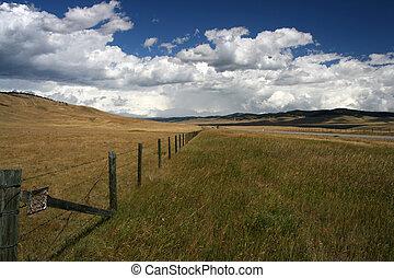 Alberta Canada - Alberta, Canada - beautiful grass pastures...