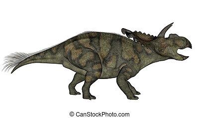 Albertaceratops dinosaur - 3D render